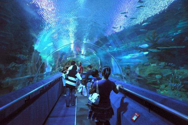 Aquaria KLCC : Aquaria KLCC in Kuala Lumpur - Malaysia