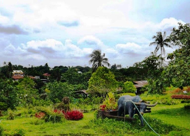 A Tagaytay Zoo at Paradizoo - Cush Travel Blog