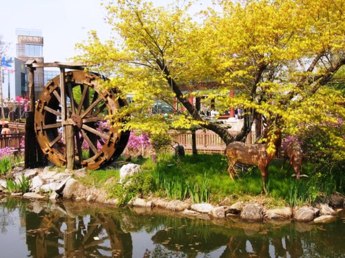 Seoul's Children's Grand Park: the Most Fun Place to Be